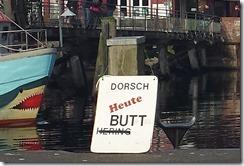dorsch_thumb.jpg