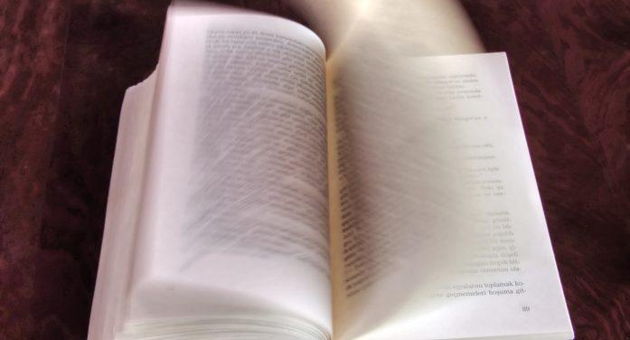 Buchpreisbindung schützt vor Monopolen